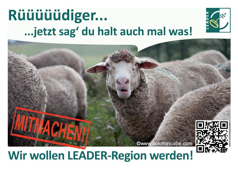 Rüdiger_Frontbild_Postkarte