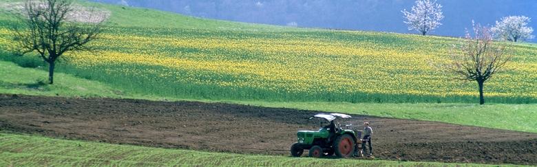 LandwirtFruehjahr