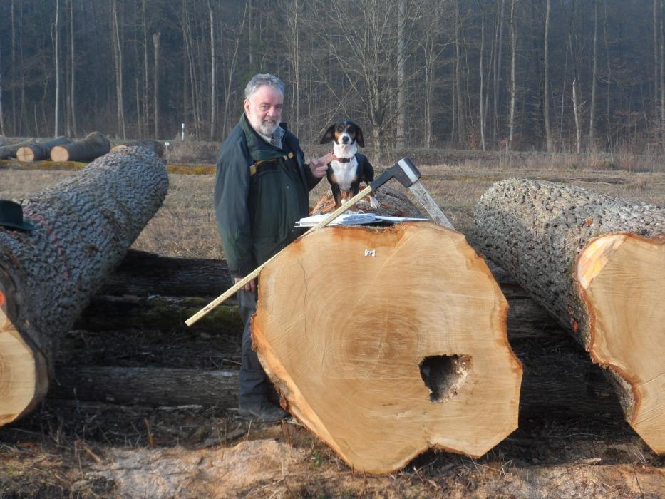 """Der Reutlinger Förster Johannes Schempp und Wälderdackel """"Kiki"""" nehmen den wertvollsten Stamm der Submission gemeinsam in Augenschein. Bild: LRA Reutlingen"""