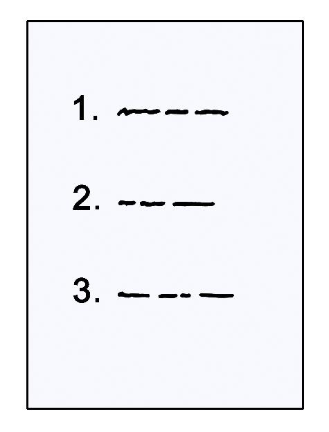 Das Bild zeigt ein Blatt Papier mit einer Liste.