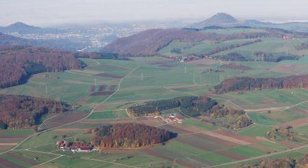Wuert_Holzwiesen
