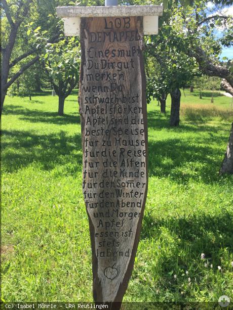 Lob dem Apfel - Gedicht